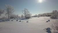 寒冷冬季结冰的湖