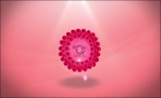 浪漫玫瑰logo展示