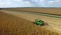 农业\-专家农民种植