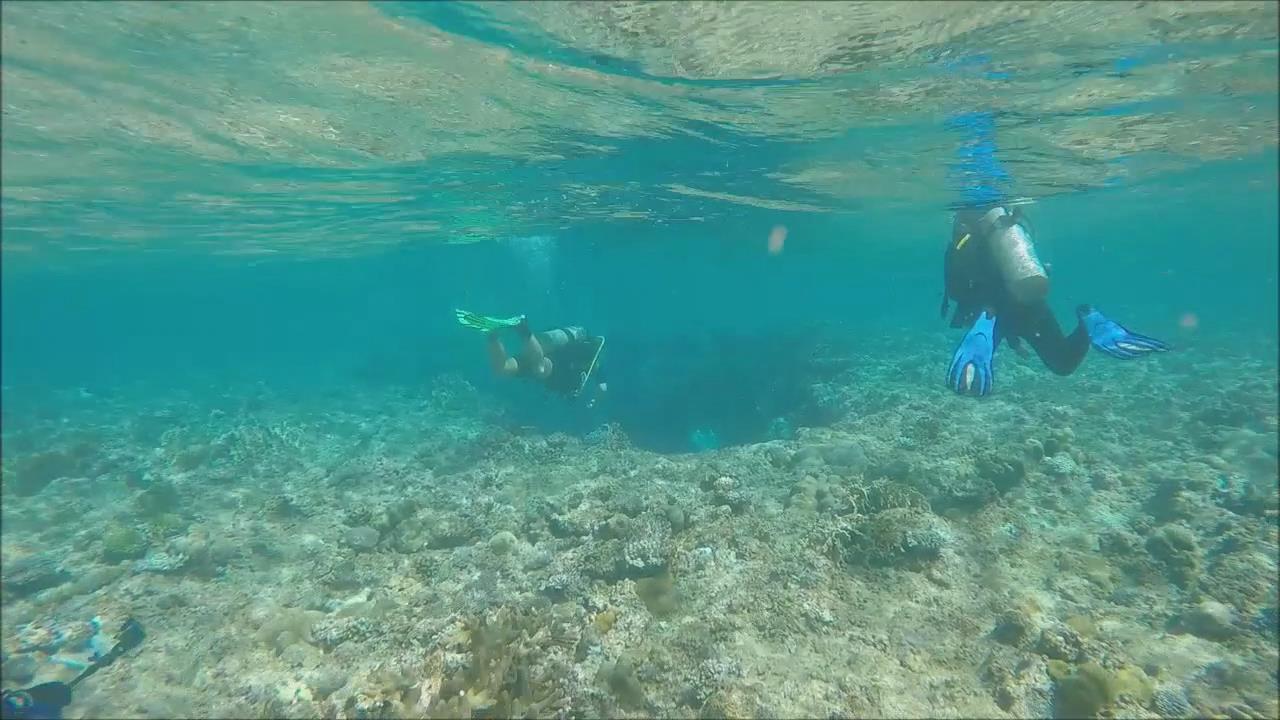 海底世界旅行
