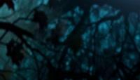 3D魔幻森林枫叶飘落