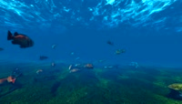 水下鱼类素材视频2 \- 3D动画\(广角\)水下和海洋素材。