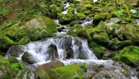 清澈的山间小溪高清实拍视频素材