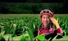 云南香格里拉高清实拍视频素材