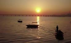航拍唯美大桥日落深圳湾大桥