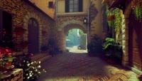 3D欧式小镇街景鲜花植物\-幸福家园