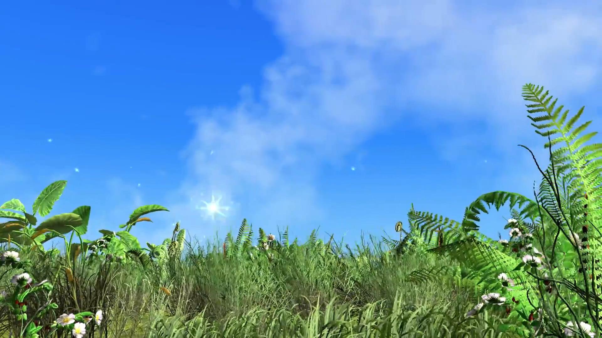蓝天白云风吹动的草地