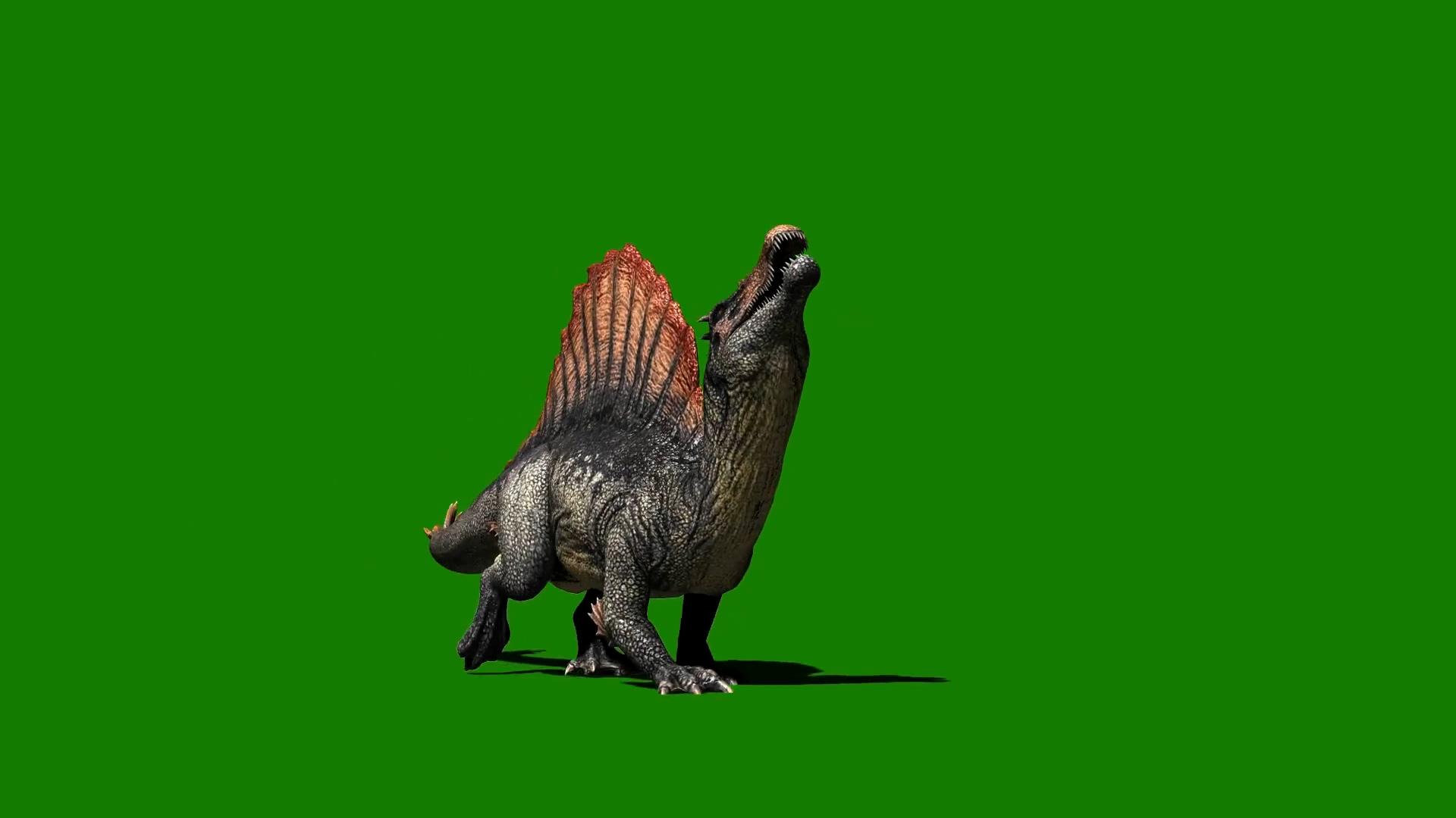 绿屏抠像棘龙恐龙