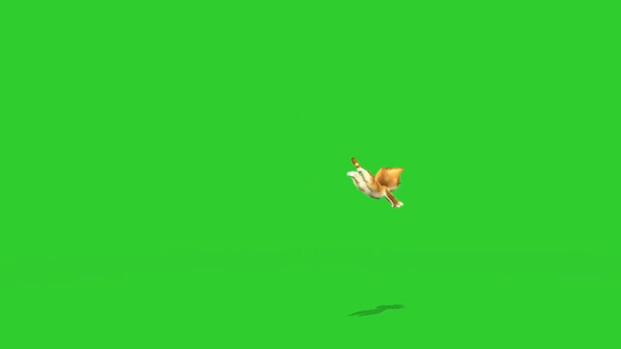 绿屏抠像欢快的卡通小猫